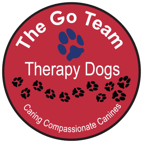 Go Team Logo Medium