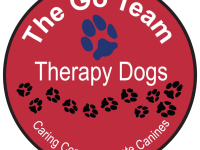 Go Team Logo Small